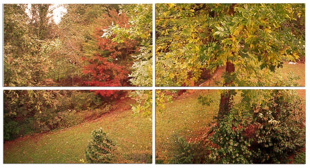 Los cuidados de la piel en otoño