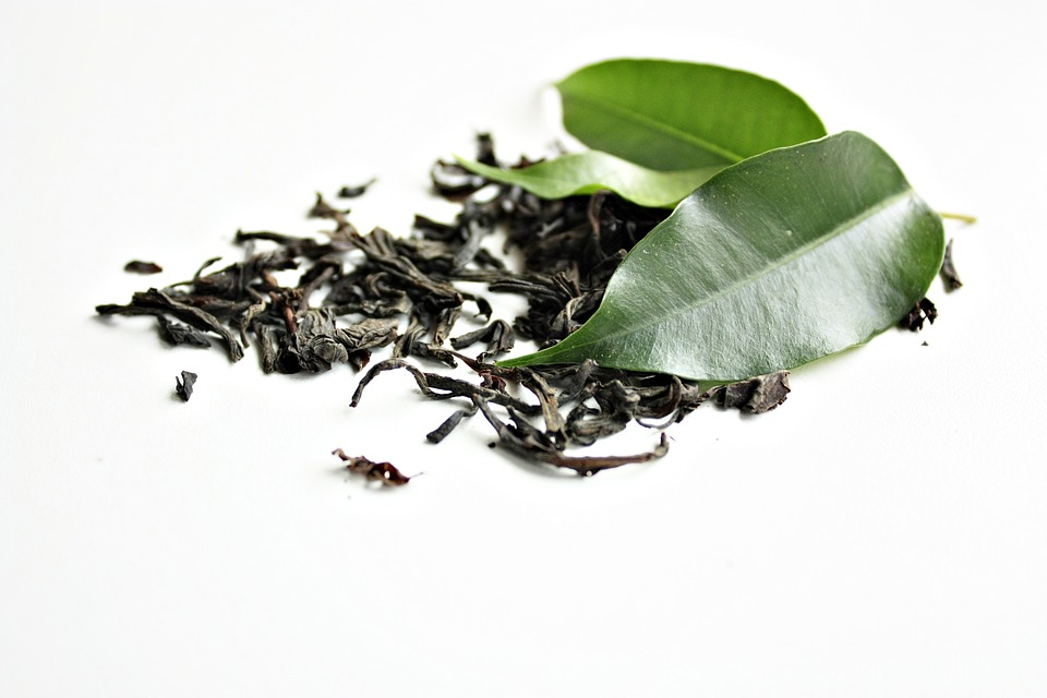 Ingrediente destacado: el Té Verde